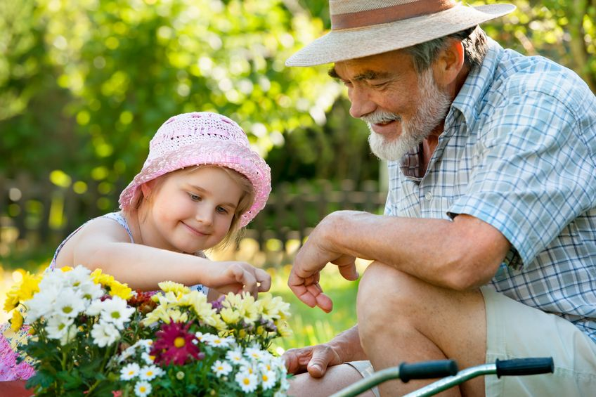 Grandfather, granddaughter, gardening