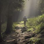 Woman backpacking in forest
